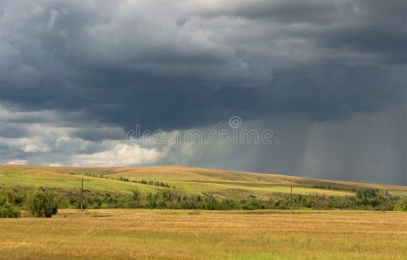 Szare burzowe nieba i deszczu linie nad żółtymi polami zdjęcia royalty free