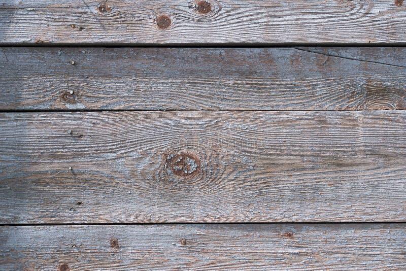 Szare stare deski z drewnianym wzorem i k?pk? dla projekta fotografia stock