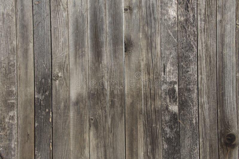 Szarej stajni Drewniana ściana Zaszaluje Prostokątną teksturę Starego Drewnianego wieśniaka deseczek Popielaty Podławy tło Twarde obrazy stock