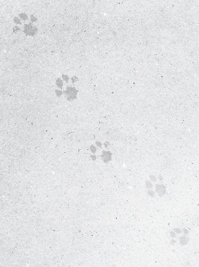 Szarość brudzą tło naturalny papier z odciskami stopymi pies łapy ilustracja wektor