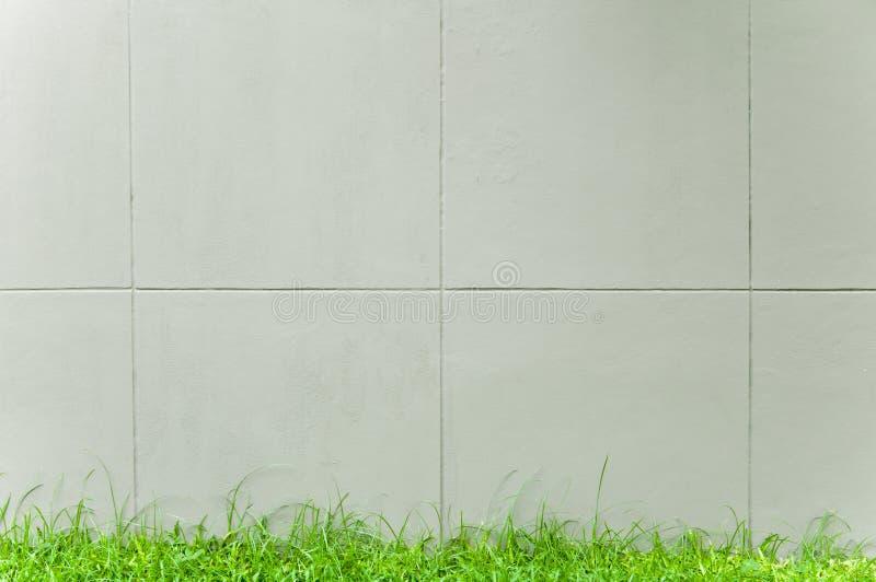 Szarość izolują z zieloną trawą zdjęcia royalty free