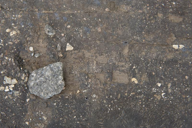 Szarość kamień kłama na desce w ziemi zdjęcia royalty free