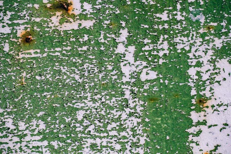 Szarość malująca metal ściana z krakingową zieloną farbą, rdz plamy, prześcieradło ośniedziały metal z krakingową i płatkowatą zi zdjęcie royalty free