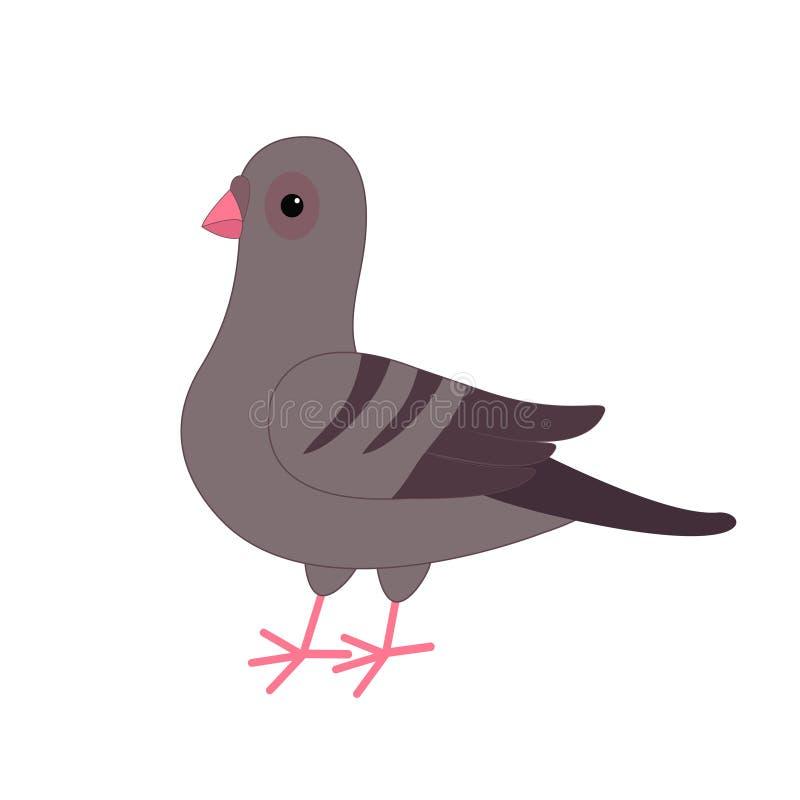 Szary gołąb gołąbki ptak Śliczny postać z kreskówki na białym tle odosobniony Gołębiej ikony Płaski projekt ilustracji
