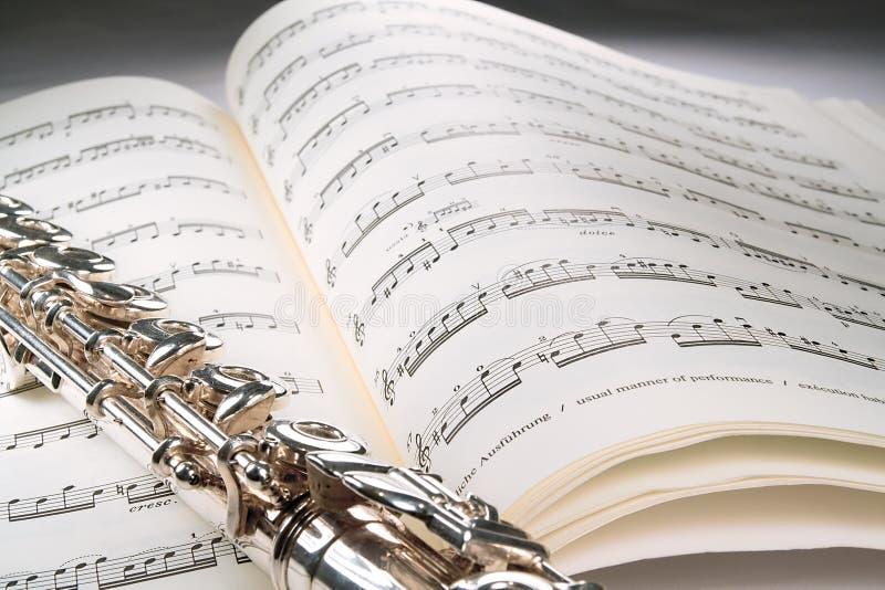 Szary Grasicy Tła Musicalu Otwarte Wynik Zdjęcie Stock
