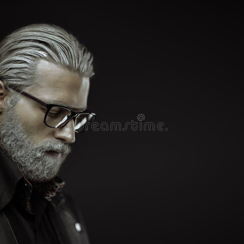 Szary z włosami mężczyzna portret fotografia royalty free