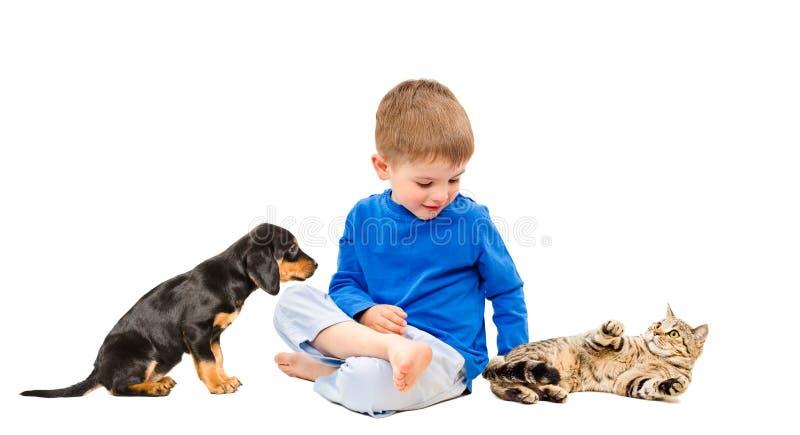 Szczęśliwa chłopiec z kotem i szczeniakiem zdjęcia stock