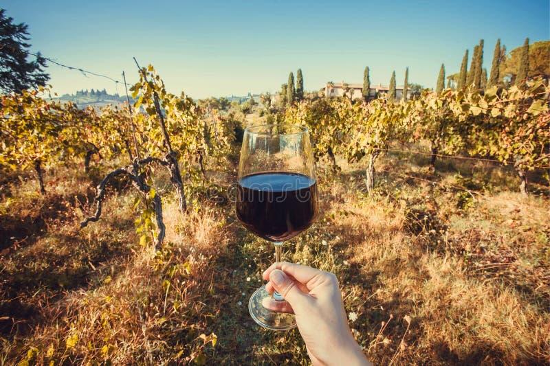 Szczęśliwa pijący ręka z wina szkłem Naturalny gronowy jarda gospodarstwo rolne przy rankiem fotografia stock