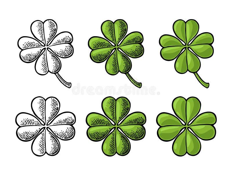 Szczęścia cztery liścia koniczyna Rocznika wektorowy kolor royalty ilustracja