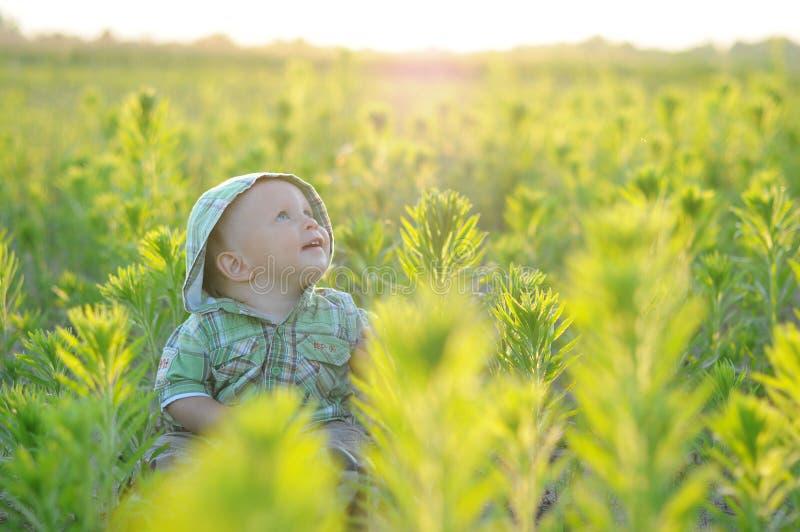 Szczęście chłopiec obsiadanie na trawie w polu obraz royalty free