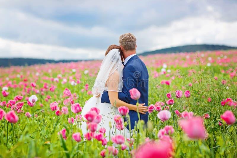 Szczęśliwa ślub para w różowym maczka polu obraz royalty free