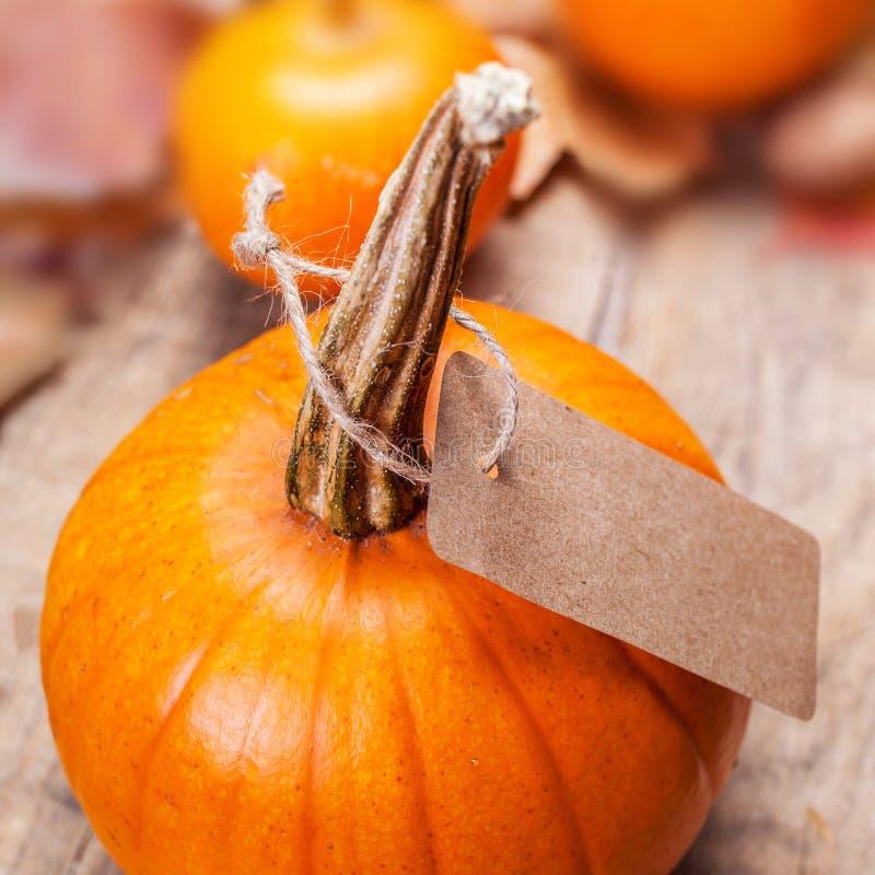 Szczęśliwa święto dziękczynienia karta z pomarańczowymi baniami p i papierem obraz royalty free