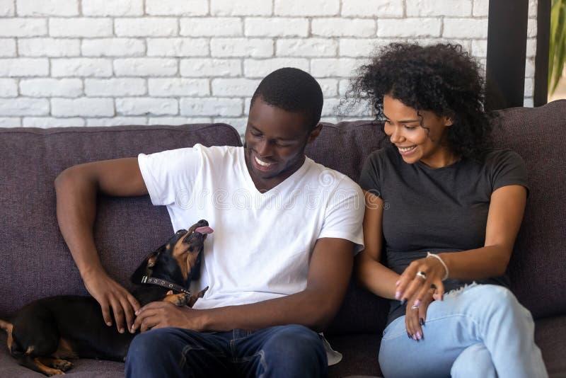 Szczęśliwa afrykańska para bawić się z psem wpólnie siedzi na leżance obrazy stock