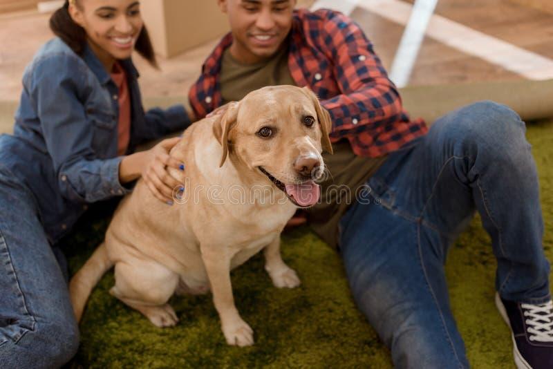szczęśliwa amerykanin afrykańskiego pochodzenia para rusza się z labradora psem obrazy royalty free
