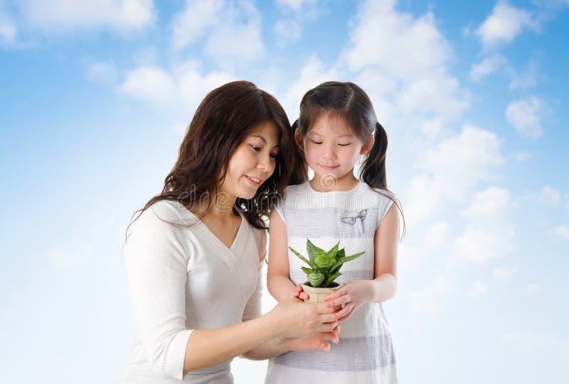 Azjatycka rodzina bierze opieki rośliny zdjęcia stock