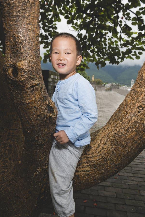 Szczęśliwa chłopiec na drzewie obrazy stock