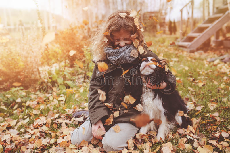 Szczęśliwa dziecko dziewczyna bawić się w jesieni z jej nonszalanckim królewiątka Charles spaniela psem obrazy royalty free