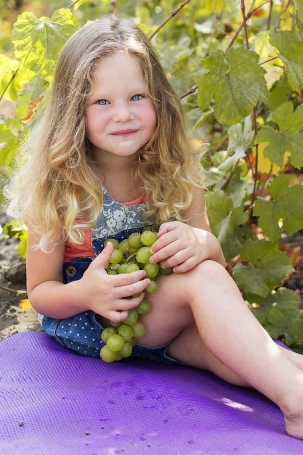 Szczęśliwa dziecko dziewczyna z winogronami w jesień winnicy zdjęcie stock