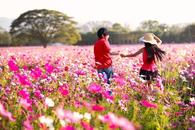 Szczęśliwa dziecko zabawa przy kosmosów kwiatów polem zdjęcia stock