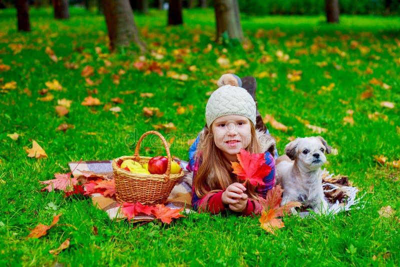 Szczęśliwa dziewczyna z koszem owoc i jej psem plenerowym obraz stock