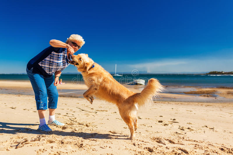 Szczęśliwa kobieta bawić się na plaży z golden retriever obraz royalty free