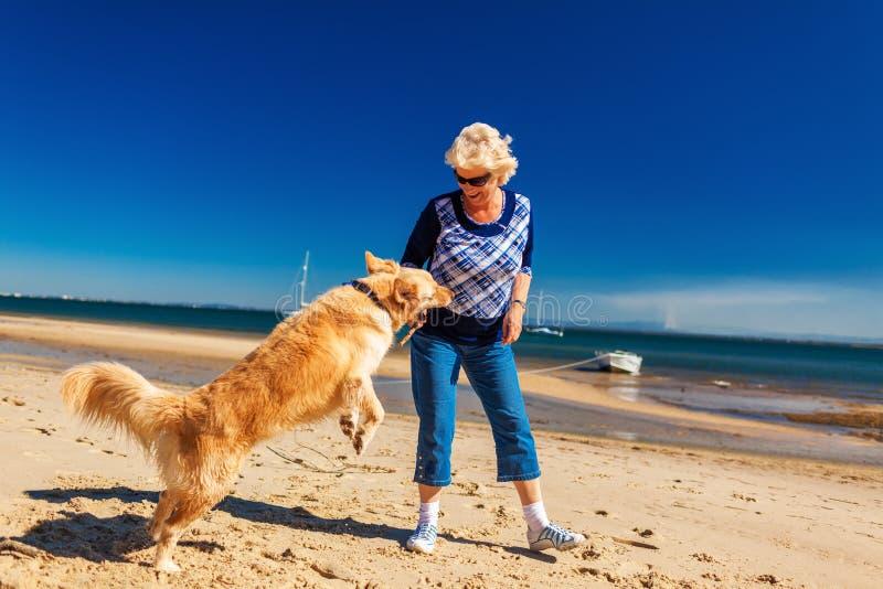 Szczęśliwa kobieta bawić się na plaży z golden retriever fotografia stock