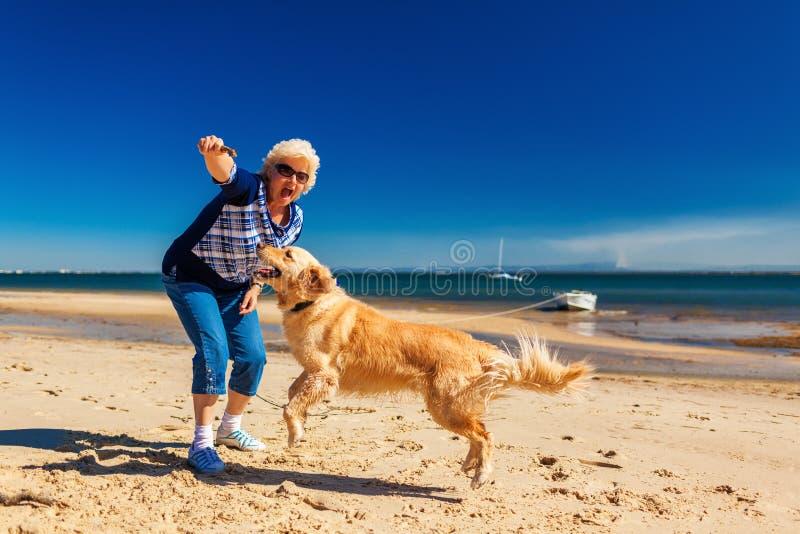 Szczęśliwa kobieta bawić się na plaży z golden retriever fotografia royalty free