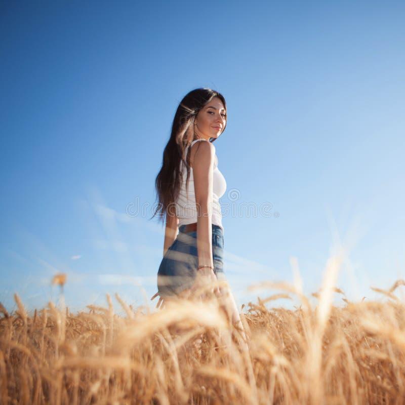 Szczęśliwa kobieta cieszy się życiem w terenie Piękno przyrody, niebieskie niebo, białe chmury i pole z pszenicą złotą Styl życia obraz royalty free