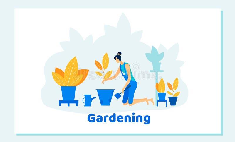 Szczęśliwa kobieta Uprawia ogródek w domu lub w szklarni ilustracji