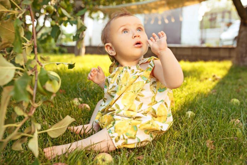Szczęśliwa młoda dziewczynka podczas zrywań jabłek w ogródzie outdoors fotografia stock