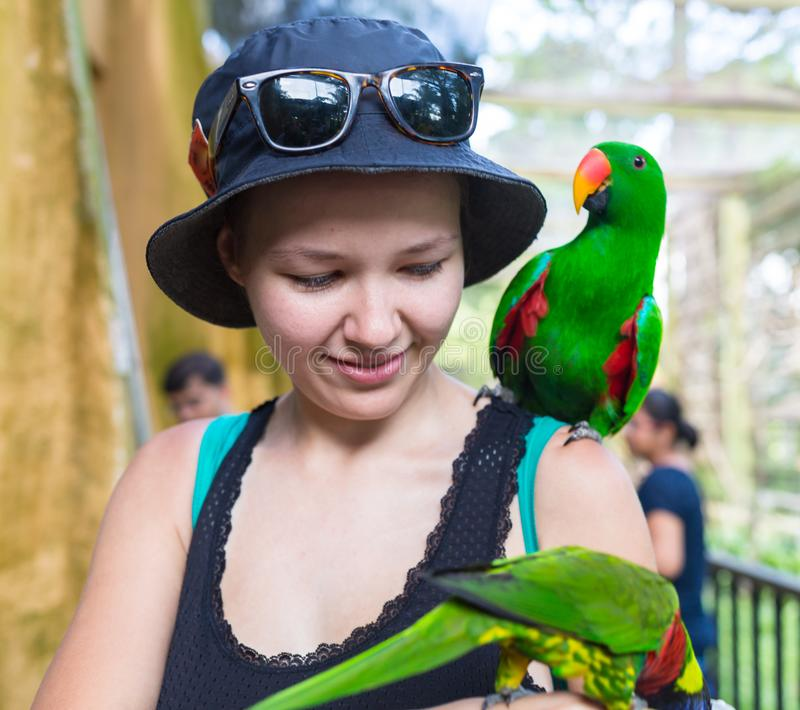 Szczęśliwa młoda kobieta z papuzim obsiadaniem na jej ramieniu egzotyczne zwierzęta Portret młoda kobieta z zawstydzaniem i obraz royalty free