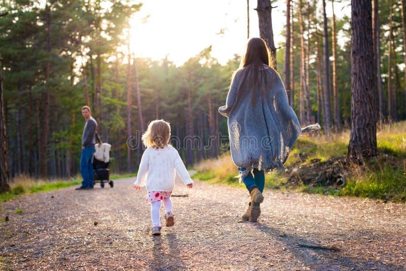 Szczęśliwa młoda rodzina bierze spacer w parku, tylny widok Rodzinny odprowadzenie wpólnie wzdłuż forrest ścieżki z ich córką obrazy stock