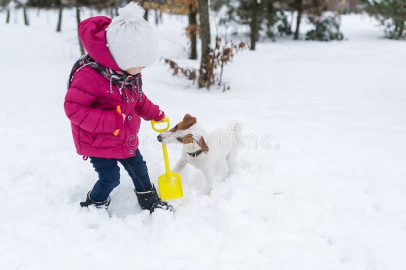 Szczęśliwa mała dziewczynka bawić się z dźwigarki Russell teriera psem w śniegu obrazy royalty free