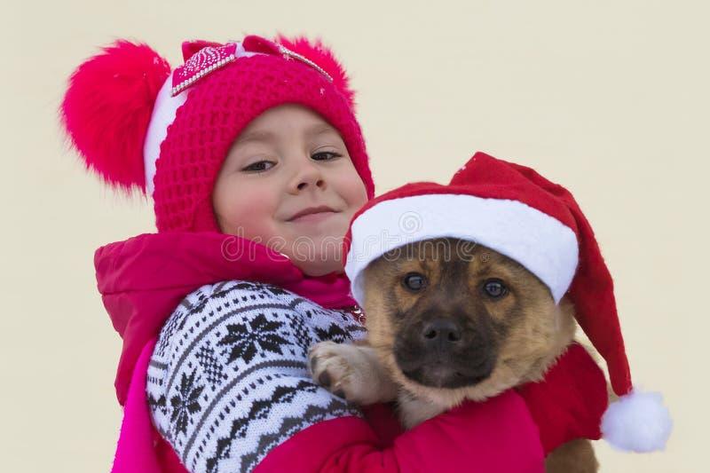 Szczęśliwa mała dziewczynka i pies przy bożymi narodzeniami obraz royalty free