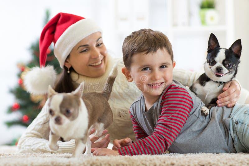 Szczęśliwa małe dziecko chłopiec, matka i psy przy bożymi narodzeniami, fotografia royalty free