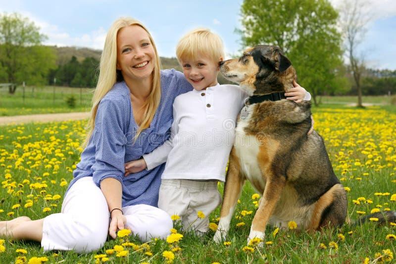 Szczęśliwa matka, młode dziecko i pies w łące, obrazy stock