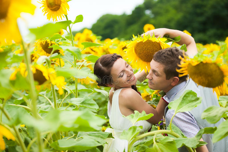 Szczęśliwa para w miłości ma zabawę w śródpolny pełnym słoneczniki zdjęcia royalty free