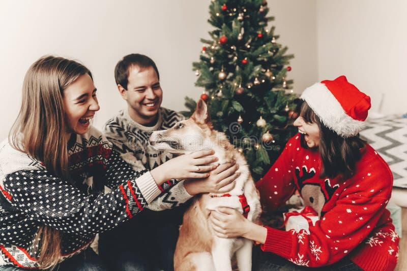 Szczęśliwa rodzina w eleganckich pulowerach i ślicznym psie ma zabawę przy chri zdjęcia royalty free