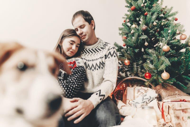 Szczęśliwa rodzina w eleganckich pulowerach i ślicznym psie przy choinką obraz royalty free