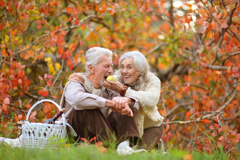 Szczęśliwa starsza kobieta i mężczyzna w parku obrazy stock