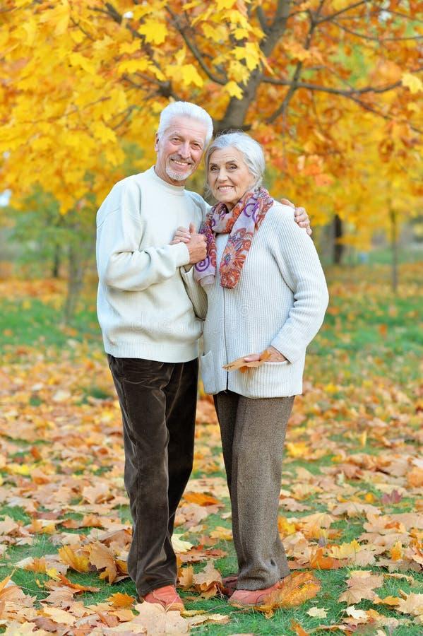 Szczęśliwa starsza kobieta i mężczyzna w parku obraz stock