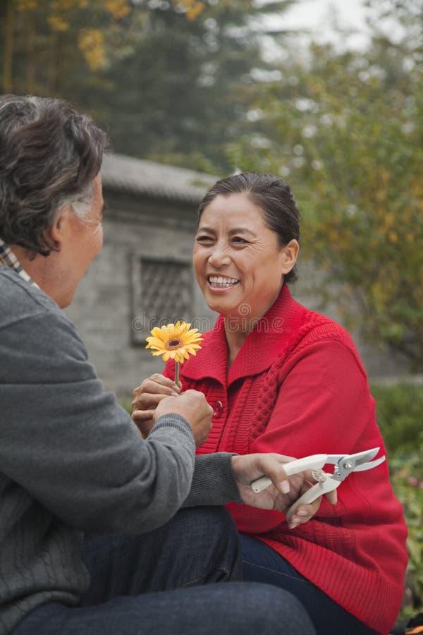 Szczęśliwa Starsza para z kwiatem zdjęcia royalty free