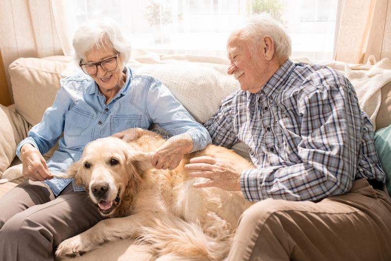 Szczęśliwa starsza para z psem zdjęcia royalty free