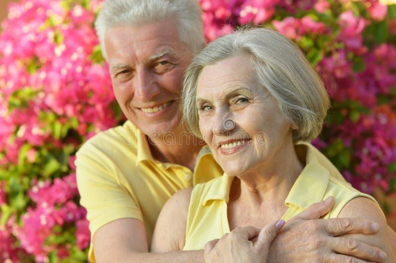 Szczęśliwa starszej osoby para obrazy stock