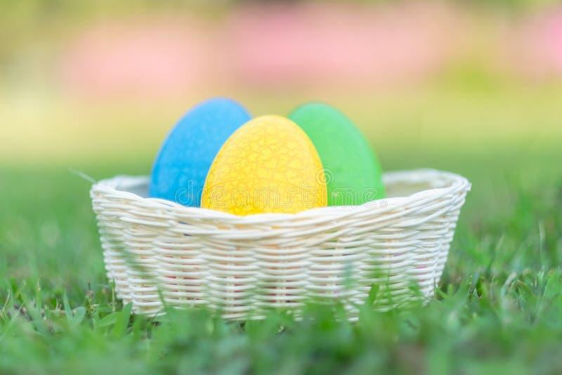 Szczęśliwa wielkanoc z Kolorowych jajek ślicznym królikiem w ranku, Śmieszna dekoracja w trawy wiosny sezonie obraz stock