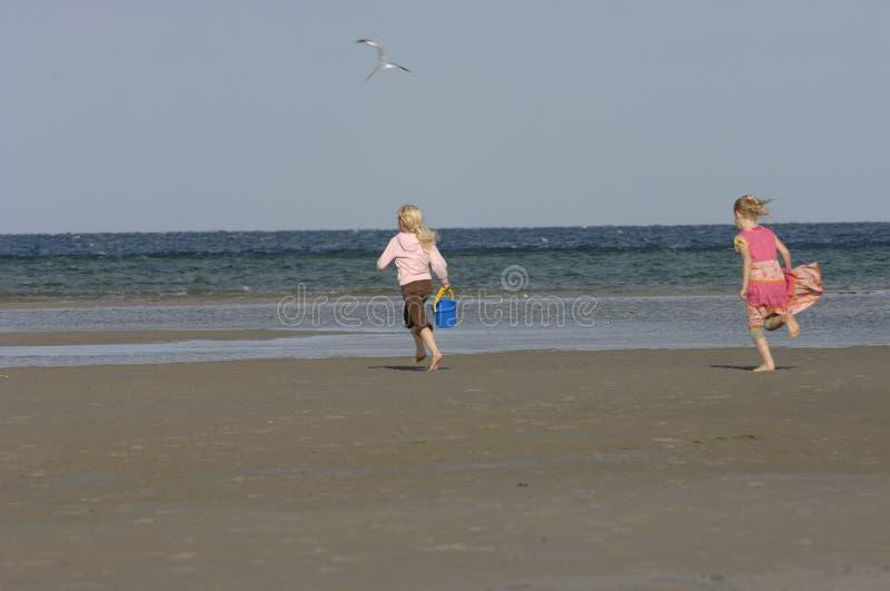 szczęśliwe dziewczyny plażowych zdjęcie stock