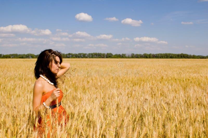 szczęśliwe pszeniczne kobiety zdjęcie royalty free