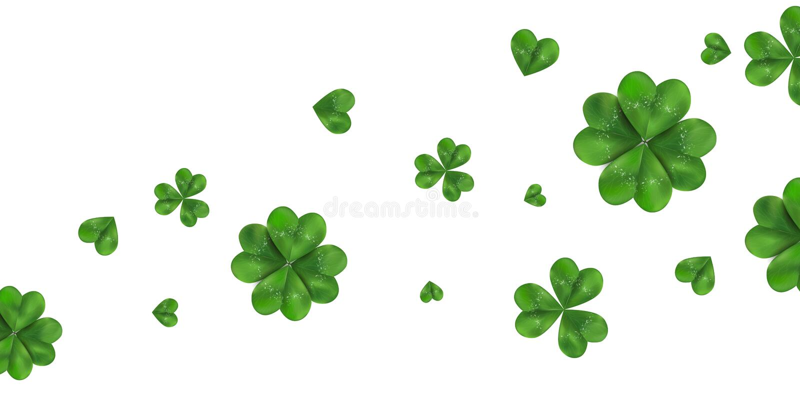 Szczęśliwego St Patrick ` s dnia wektorowy horyzontalny tło z shamrock, cztery liściasta koniczyna odizolowywająca na białym tle royalty ilustracja