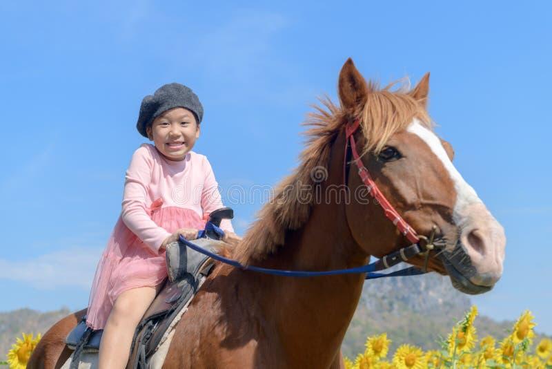 Szczęśliwej ślicznej dziewczyny jeździecki koń w słonecznika polu zdjęcia stock