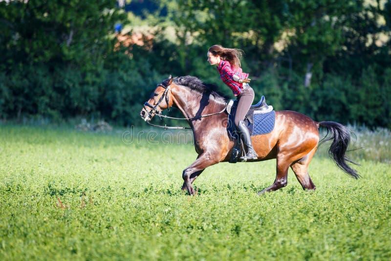 Szczęśliwej młodej kobiety jeździecki koń przy pogodnym letnim dniem zdjęcia stock